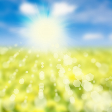 summer  or  spring  abstract nature background with grass in the meadow and blue sky with clouds in the back  photo