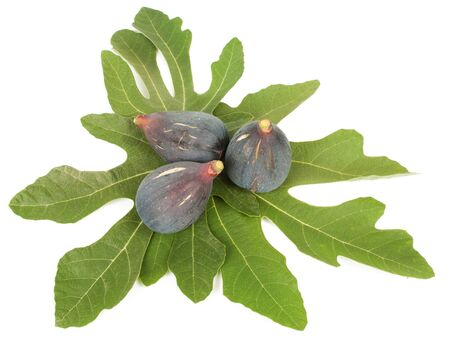 purple fig: Ripe fresh purple fig fruits and leaf on white background