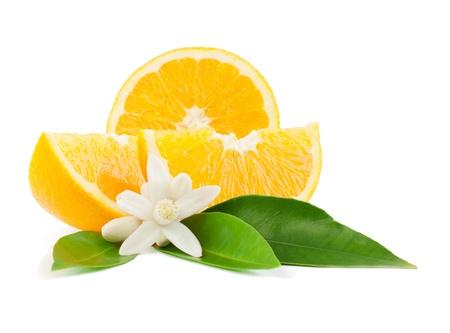 Oranje, blad, bloesem en slice geïsoleerd op een witte achtergrond. Stockfoto