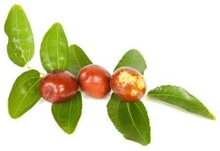 jujube fruit (of Chinese datum of Ziziphus Zizyphus) op tak met bladeren geïsoleerd op witte achtergrond