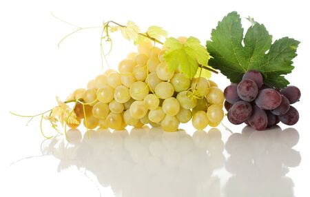 Red and  yellow grapes bunches with leaves and a grapevine  isolated on white  background   with reflection photo