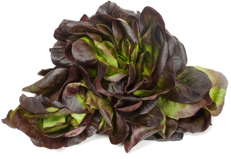 Fresh   red lettuce  isolated on white