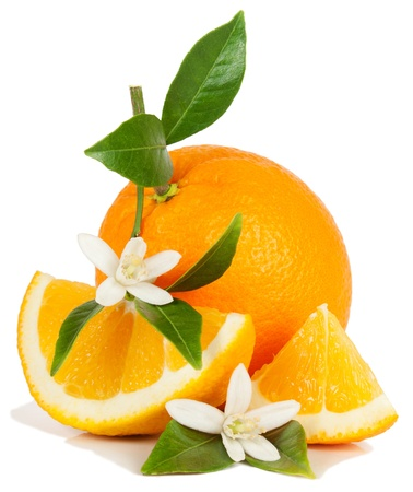 navel orange: Orange, leaf, blossom and slice isolated on a white background.