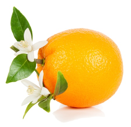 fruta entera naranja con hojas y flores aisladas sobre fondo blanco