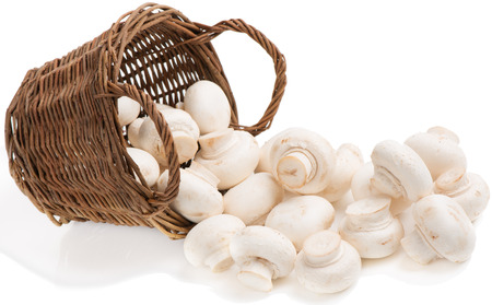 underlying basket with  mushrooms  spilling  isolated on white  photo