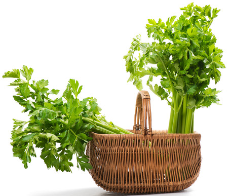 A wicker basket with a two big head of celery isolated on a white background.  Stock Photo
