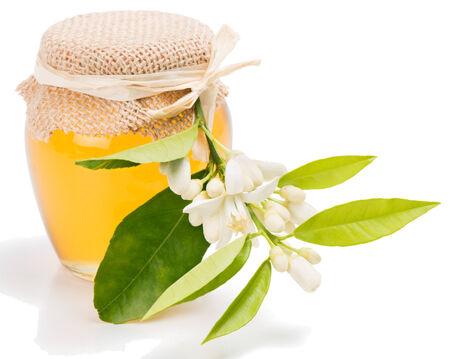 blossom honey: Azahar honey  jar and orange tree blossom,  isolated on white background.