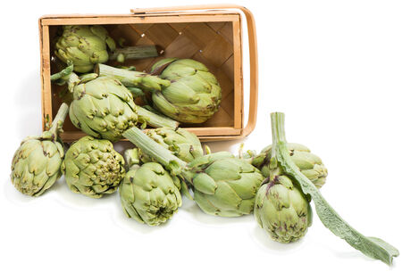artichokes  in a wooden box is scattered on white photo