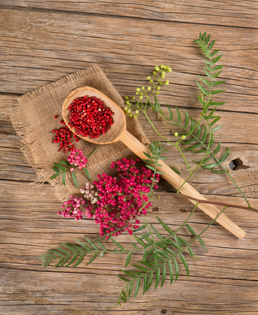 peppertree: View from above of red peppercorns on a twig ant dry  in a wooden spoon on a wooden table Stock Photo