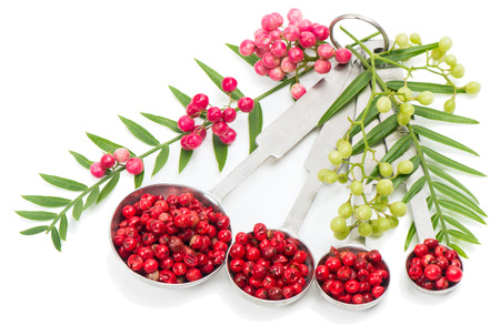 peppertree: Pink dried  peppercorns in measuring spoons and branches of the fresh isolated on white  Stock Photo