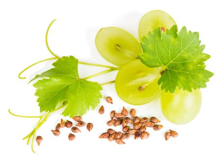 racimos de uvas: Vista superior de las uvas, las semillas de la uva de color amarillo y de vid aislados en blanco. Selectivo se centran en un semillas.