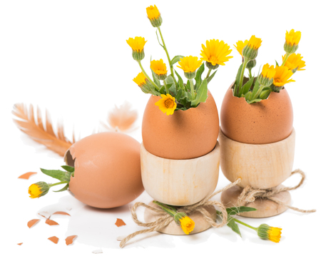 eggshells decorated yellow flowers  in a wooden eggcups isolated on white photo