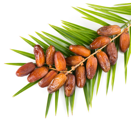 Top view of bunch of date fruits with palm leaf isolated on white background