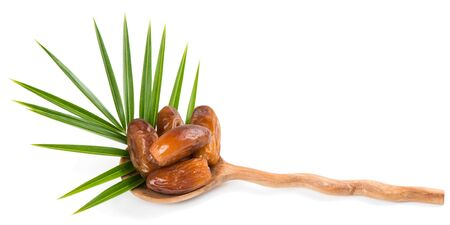 date palm tree: Date fruits in a spoon with leaf of palm tree isolated on white background Stock Photo