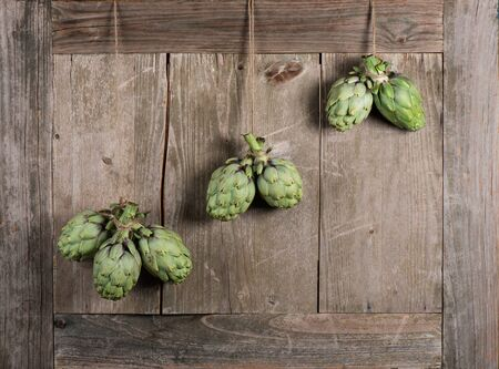 room for copy: Artichokes  hanging from an old vintage door, room for copy space Stock Photo