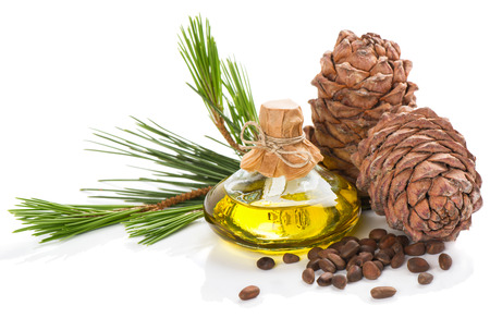 Cedar pine nuts, cones and oil  isolated on white background Banco de Imagens