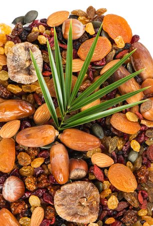 palm fruits: Assortment  dry fruits and berries with leaf of palm tree, top view Stock Photo