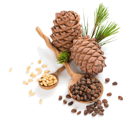pine nuts: Cedar pine cones with unpeeled and peeled nuts in a wooden spoons isolated on white background