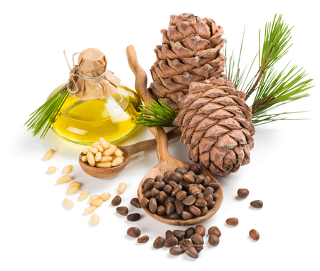siberian pine: Oil, cones of cedar and nuts peeled and unpeeled isolated on white background Stock Photo