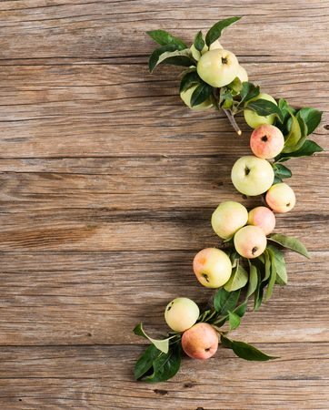 green apples: Apple tree twigs with green leaves and fresh apples on old wooden background. Copy space. View from above.