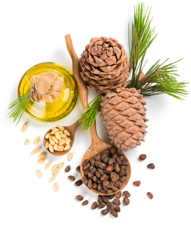 Top view of cedar pine cones, oil, unpeeled and peeled nuts isolated on white background Stock Photo