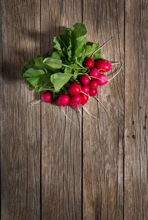 fascicle: Top view of bunch of red radish on a rustic wooden background with copy space