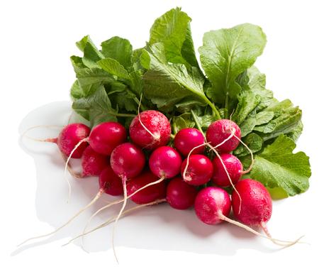 fascicle: Fresh red radish isolated on white background