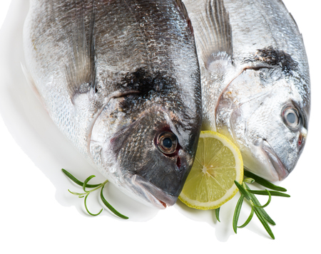 fresh fish: Two fresh dorada fish decorated with lemon and rosemary isolated over the white background
