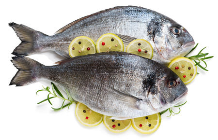 dorada: Top view of two fresh dorada fish decorated with lemon and rosemary isolated over the white background