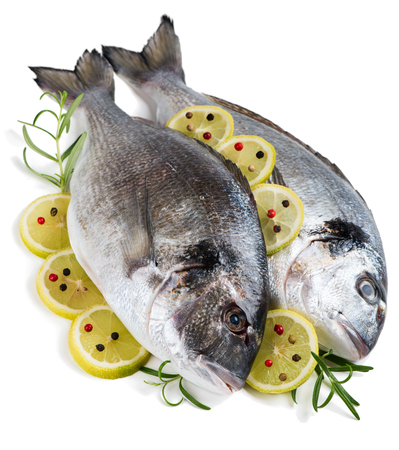 dorada: Fresh dorada fishes decorated with spices isolated over the white background