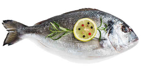 dorada: Top view of one fresh dorada fish decorated with lemon, pepper and rosemary isolated over the white background