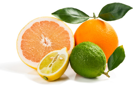 citrus: Different citrus fruits isolated on white background Stock Photo
