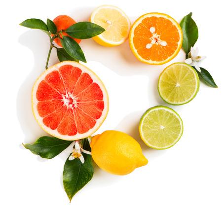 Hoogste mening van citrusvruchten (kalk, citroen, sinaasappel, grapefruit en mandarijn) met bladeren en bloesem die op witte achtergrond wordt geïsoleerd.