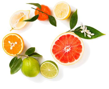 CITRICOS: Vista desde arriba de cítricos (limón, limón, naranja, pomelo y mandarina) con hojas y flores aisladas sobre fondo blanco.