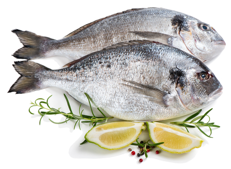 sparus: Two fresh dorada fishes with spices isolated over the white background.