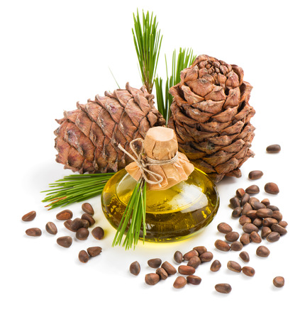 siberian pine: Cedar nuts, cones and extra virgin cedar oil in bottle decorated with twigs of cedar tree isolated on white background. Stock Photo