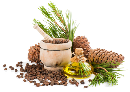 siberian pine: Cedar cones, oil, pine nuts in a mortar, cedar twigs isolated on white background.
