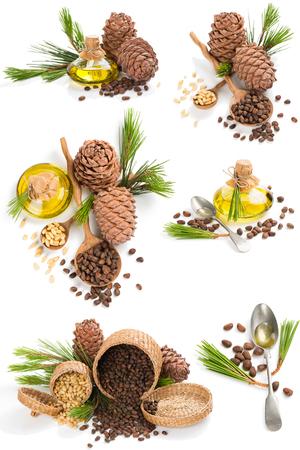 Set di prodotti di cedro: olio, coni e noci decorato con ramo di albero di cedro isolato su sfondo bianco.