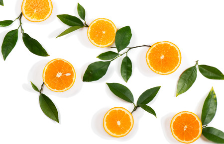 naranja arbol: Composition with twigs of orange tree and fruits isolated on white background. Above view.  Foto de archivo