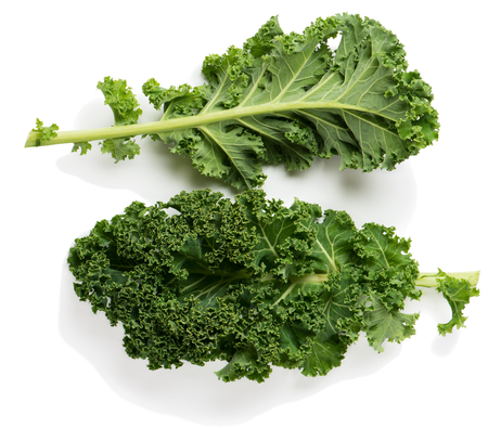 Two kale leaves isolated on white background. View from above. Stockfoto