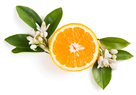 Top view of slice of orange fruit with leaves and blossom isolated on white background.