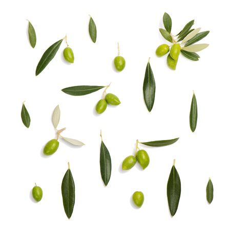Top view of green olive with leaves and twig of olive tree, isolated on white background. Flat lay.