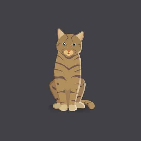 tiger cat vector illustration isolated