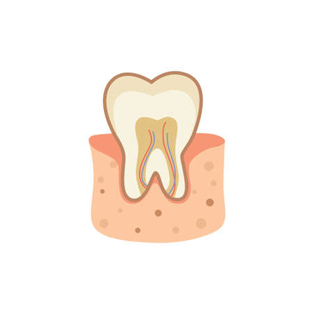 tooth cartoon vector illustration eps10