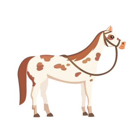 isolated horses. Cute cartoon horse farm animals. Differend breads
