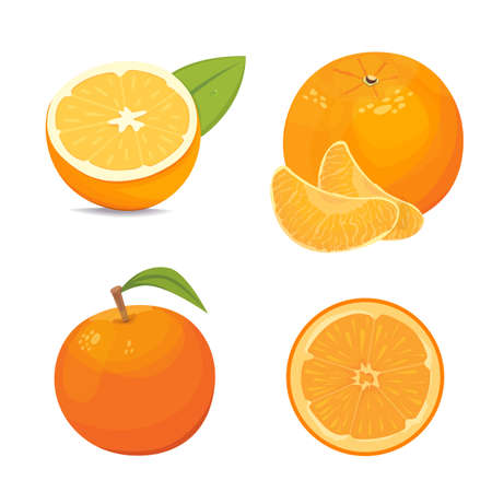 ripe: Vector collection of fresh ripe oranges and tangerines with leaves.