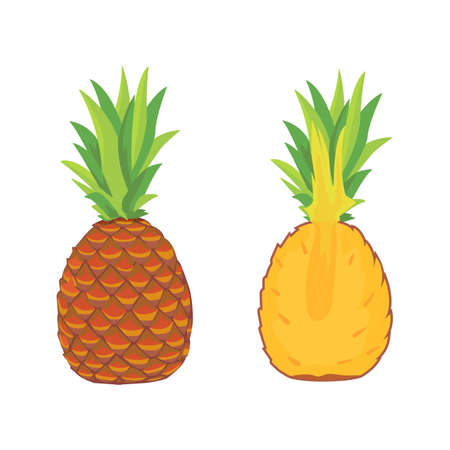 Sliced pineapple isolated vector collection. set pineapple with price. vector illustration on white background isolated
