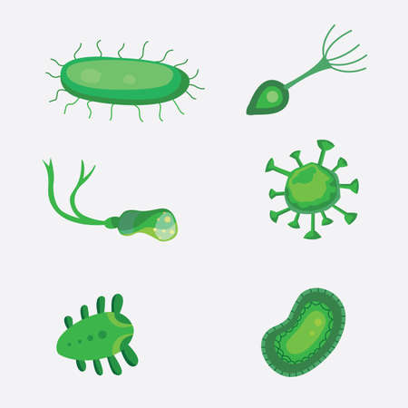 vector set bacteria and virus flat illustration