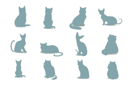 breeds: Collection Cats of Different Breeds. Vector isolated cat silhouette isolated Illustration