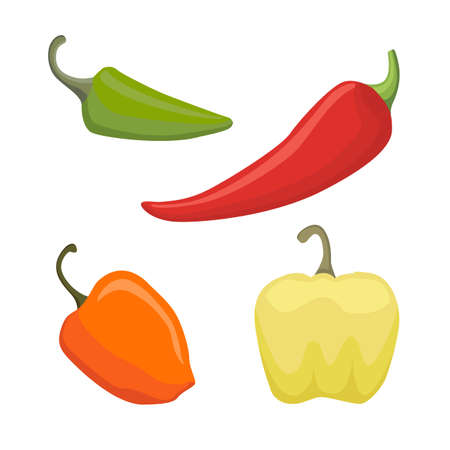 cayenne: Vector Set of Colored Yellow Green Orange and Red Sweet Bulgarian Bell Peppers, Paprika Isolated